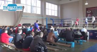 Финальные отборочные бои по боксу в Бельцах, для участия в Чемпионате Европы
