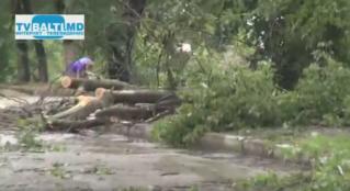Ураган и его последствия в Бельцах