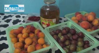 Чем кормят детей в лагере» Олимпиец»в Бельцах?