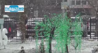 Первый долгожданный снег в Бельцах …