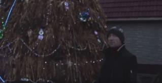 Житель молдавского села сделал «елку» из кукурузных стеблей и украсил ее ботинками