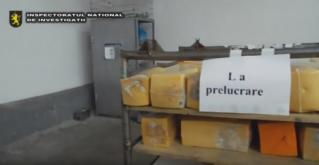 Peste 500 kg de cașcaval alterat, confiscat de poliție