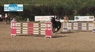 Бельцкий конно- спортивный клуб- Чемпион