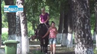 В конно- спортивном клубе можно отдахнуть и расслабиться