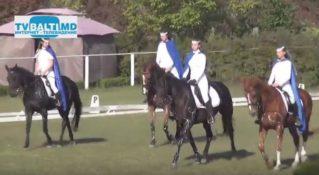 Парад участников и показательные выступления конного искусства