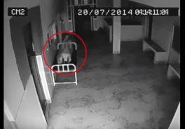 Душа покидает тело, камера видео наблюдения в больнице