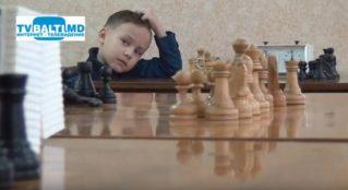 Стихи о шахматных фигурах устами детей