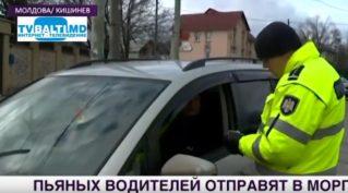 Пьяных водителей в Молдове отправят в морг- На работу