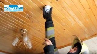 Campania- O casa protejata o viata salvata