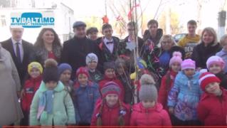 Акция» Посади дерево будущего»- прошла в лиц Горького